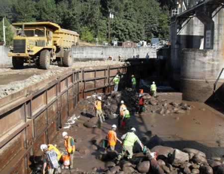 Strongest and Safe Coffer Dam Systems